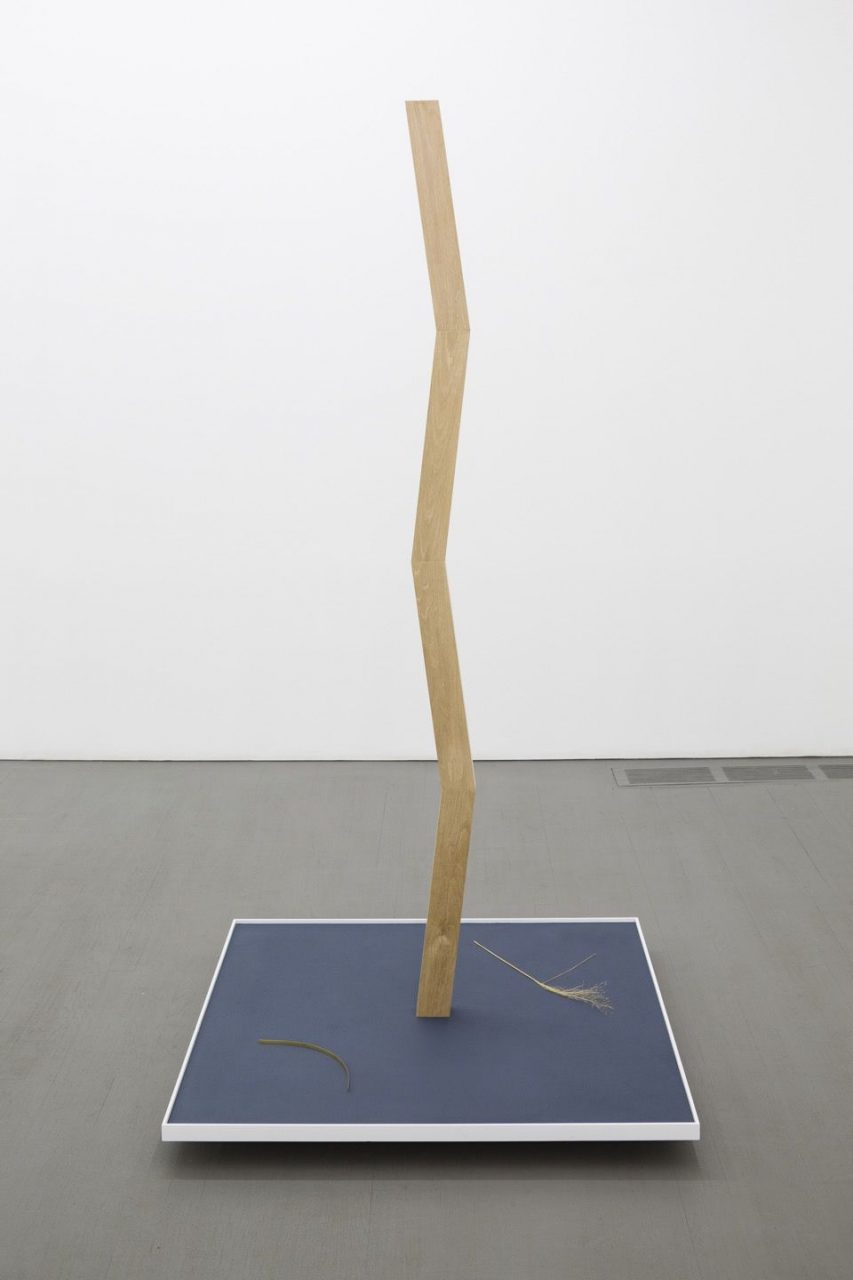 Ned Colclough | Untitled, 2013