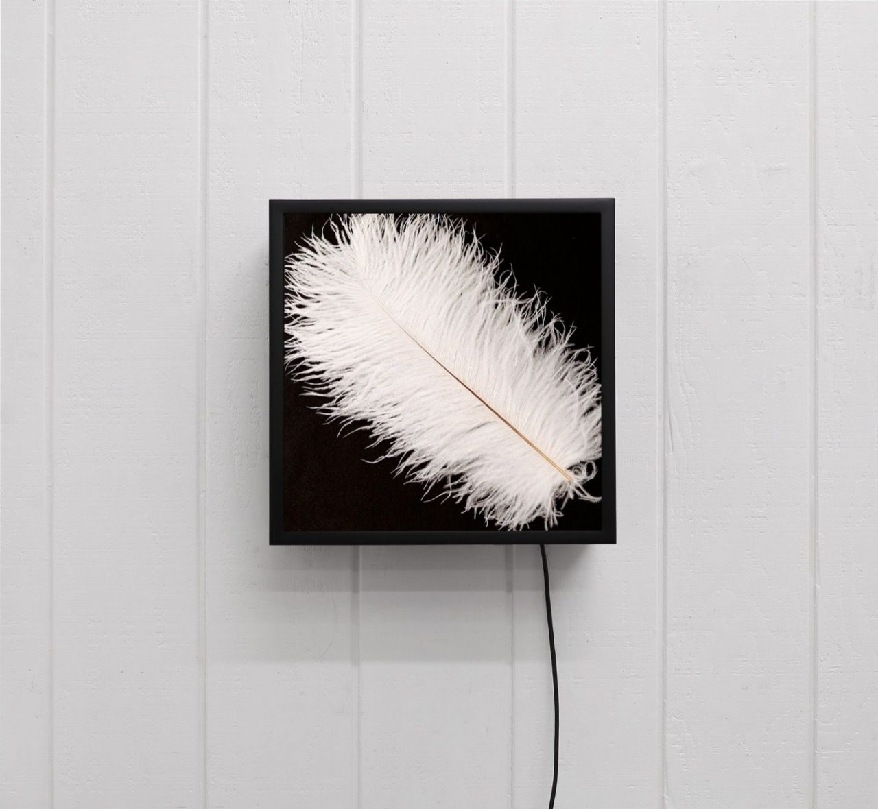 Out-Of-Place Artifacts | Knife, Sole, Feather, Scrubbers, 2015